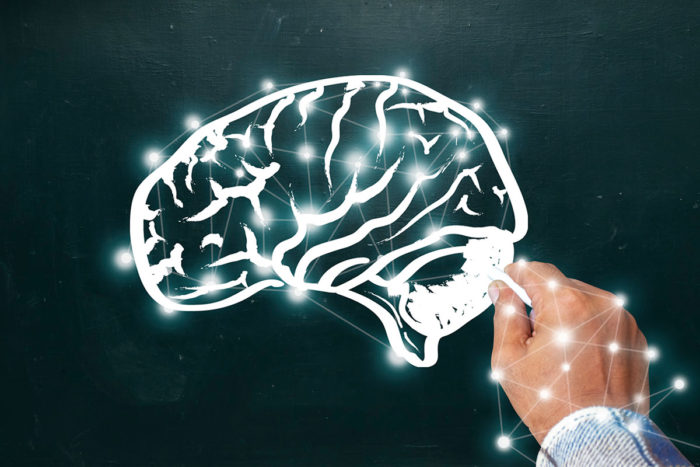 If Genes Dont Turn Off Brains Wiring >> Mind S Quality Control Center Found In Long Ignored Brain Area