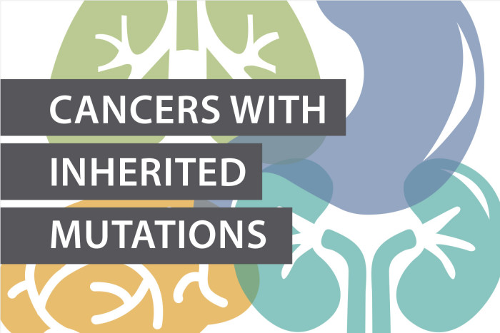 Study uncovers inherited genetic susceptibility across 12 cancer