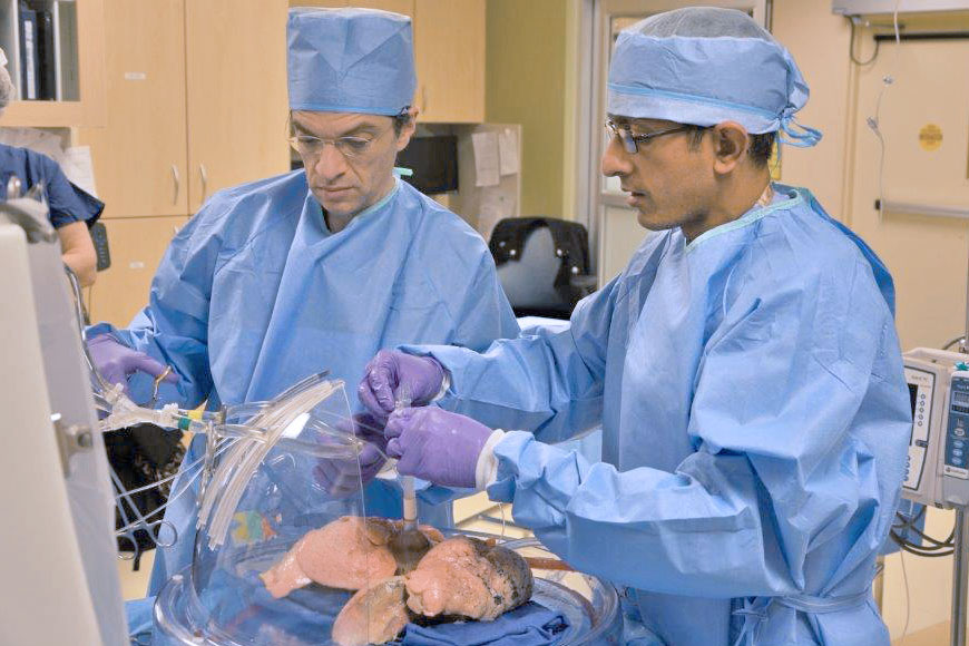 Surgeons at Washington University School of Medicine in St. Louis recondition lungs in device that has the potential to expand the lung transplant donor pool. Conducting the procedure are (left) Daniel Kreisel, MD, Phd, professor of surgery and of pathology and immunology, and (right) Varun Puri, MD, associate professor of surgery.