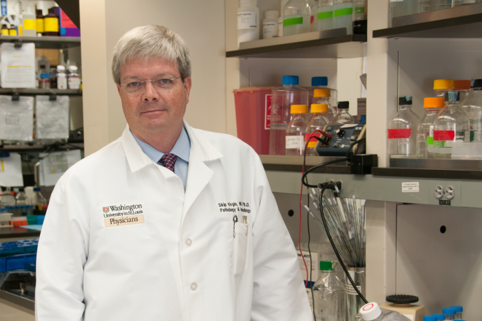 Skip Virgin, MD, PhD, professor of microbiology, medicine, and pathology and immunology, has shown that infecting laboratory mice with the mouse equivalent of common human pathogens may make them better models for vaccine studies.