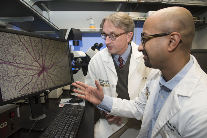 Rithwick Rajagopal, MD, PhD (foreground), and  Clay F. Semenkovich, MD, view an image of a mouse retina damaged by diabetes. They found that nerve damage in the retina precedes the development of abnormal blood vessels normally blamed for vision loss in diabetic retinopathy.