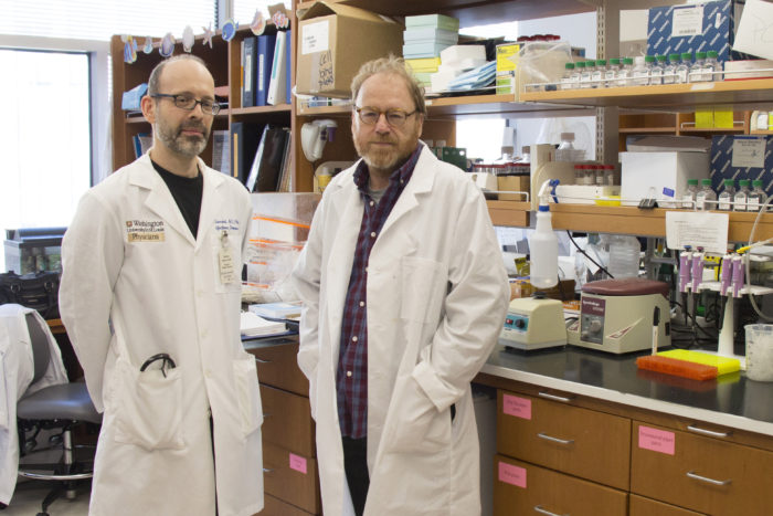 Michael Diamond, MD, PhD, (left) and Daved Fremont, PhD, have produced and characterized antibodies that protect mice against a lethal dose of Zika virus. These antibodies could lead to a vaccine, diagnostic tests or treatments for the disease.