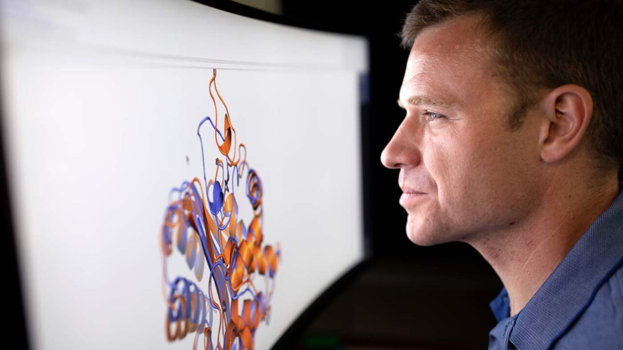 Gregory Bowman views an animation of a protein structure on a computer monitor
