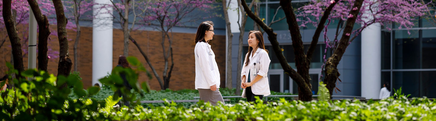 Medical students Brooke Liang and Margery Gang visit in Hope Plaza at the center of the Medical Campus.