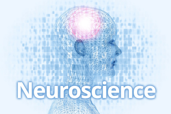 Anatomy and Neurobiology becomes Department of Neuroscience ...