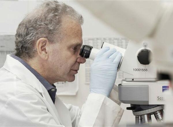 Dr. Josh Rubin looks through a scope in lab